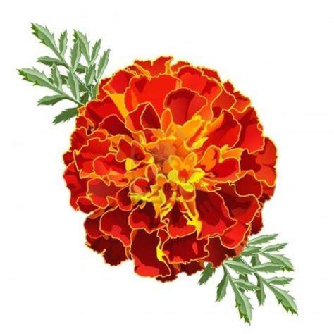 october flower tattoo marigold october birth flower parts