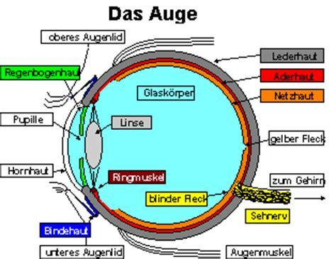 Warum Ist Die Sonne Gelb by Unbenanntes Dokument