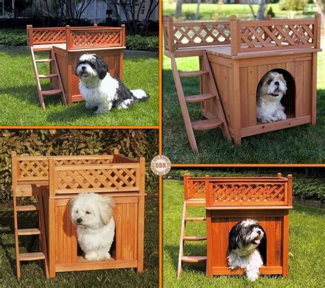 dog house with deck every dog deserves a viewing deck dog house viewing deck