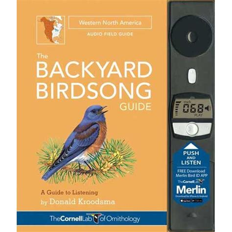 backyard birdsong guide buteo books aba sales the backyard birdsong guide