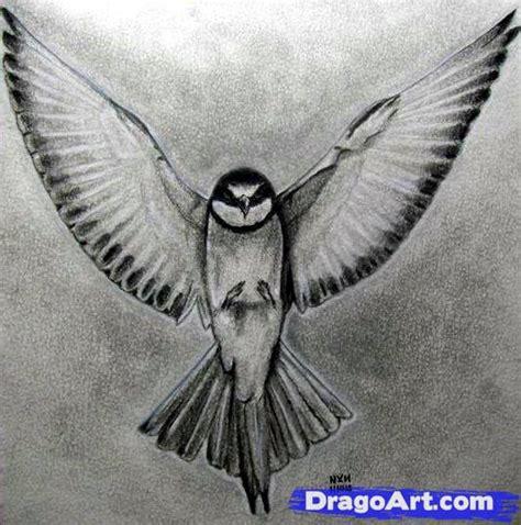 how to draw a realistic how to draw a realistic bird draw real bird step by step birds animals free