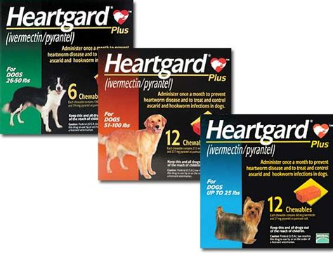 heartgard for dogs heartworm preventatives evers veterinary clinic chico ca