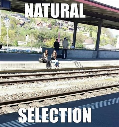 natural selection funny memes