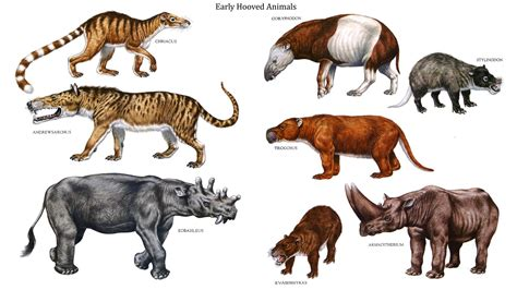 extinct mammals related keywords suggestions extinct mammals long african carnivores list related keywords african
