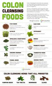 home colon cleanse colon cleansing foods infographic holistic health journal