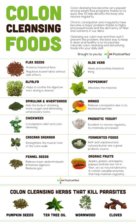 colon cleansing foods infographic holistic health journal