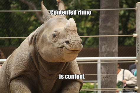 Rhino Memes - i never thought i d see a smiling rhino by