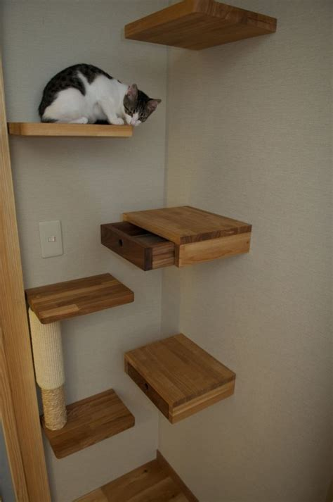 Corner Cat Shelf by Secret Drawer Ideas For Hiding Things In Plain Sight