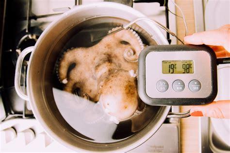 cucinare il polpo senza acqua come pulire e cuocere il polpo passo passo dissapore
