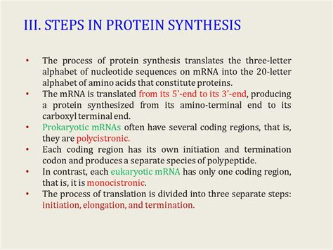 protein synthesis steps protein synthesis ppt