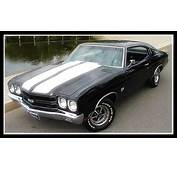 Chevelle SS  American Muscle Car Gallery