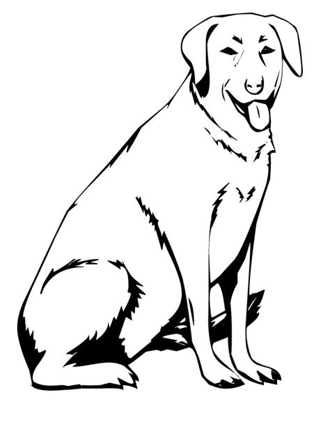yellow lab coloring pages az coloring pages