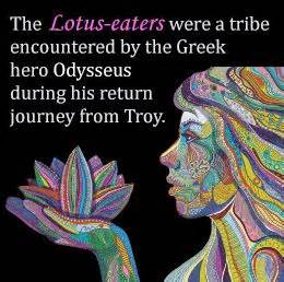 Lotus Eater Story 230 Best Images About Lotus On Hindus