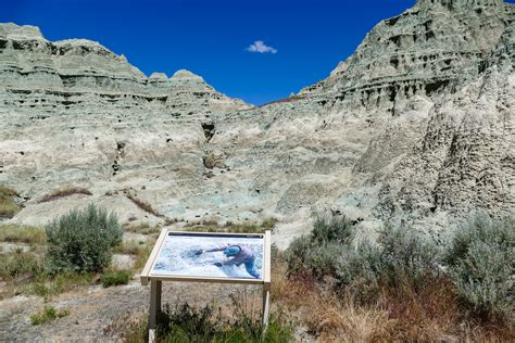 john day fossil beds sifting through history at john day fossil beds national