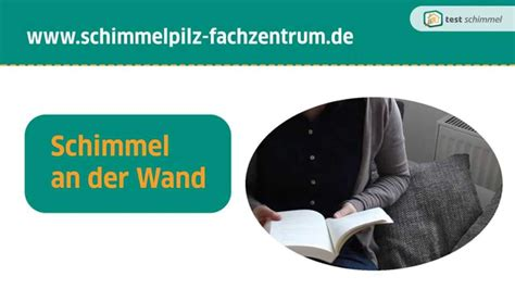 Wie Entsteht Schimmel An Der Wand 4326 by Schimmel An Der Wand Wie Entsteht Schimmelpilz An Der