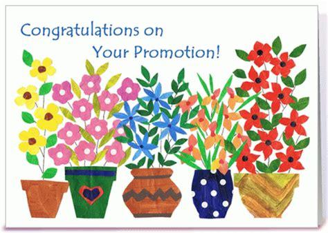 congratulations   promotion segerioscom