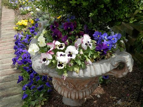 Large Hypertufa Planters by Top 5 Benefits Of Hypertufa Planters And Garden Decoration