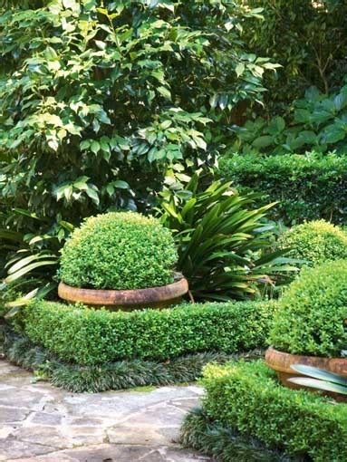 alley garden by fudge landscapes boxwoods 59 best images about green and white gardens on