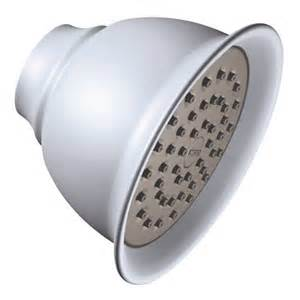 moen shower single function shower heads platinum
