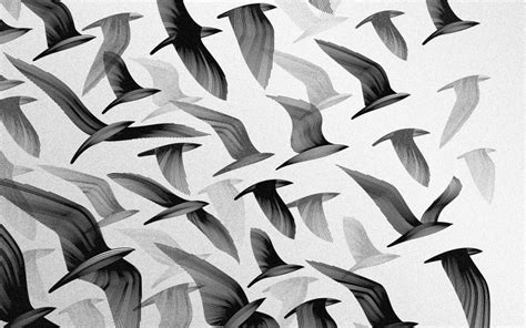 black and white wallpaper with birds black and white birds digital art monochrome artwork