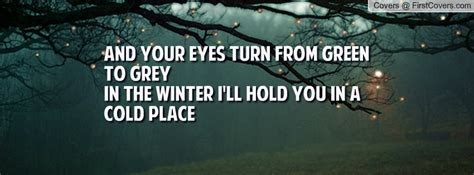 quotes about gray eyes quotes about grey eyes quotesgram