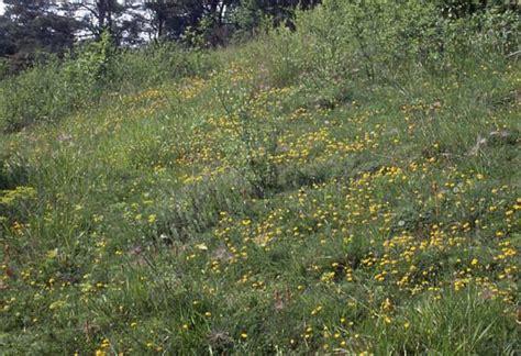 la vallee monnet decouverte des sites naturels