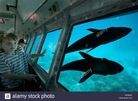 Island Semi Boot semi submarine stock photos semi submarine stock images