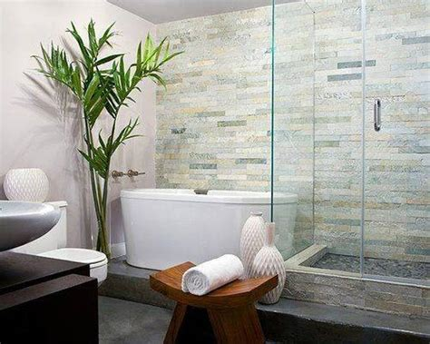 bamboo plant in bathroom admirable zen bathroom decor with indoor bamboo plant and