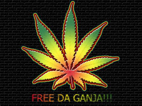 download wallpaper daun ganja pin ganja wallpaper free download on pinterest