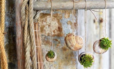 piante grasse da vaso piante grasse vaso archivi leitv