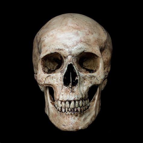 tutorial photoshop skull face skull island photoshop cc tutorial 300 free photoshop