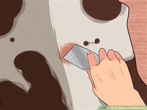 Cowhide Rug Cleaning - 3 ways to clean a cowhide rug wikihow