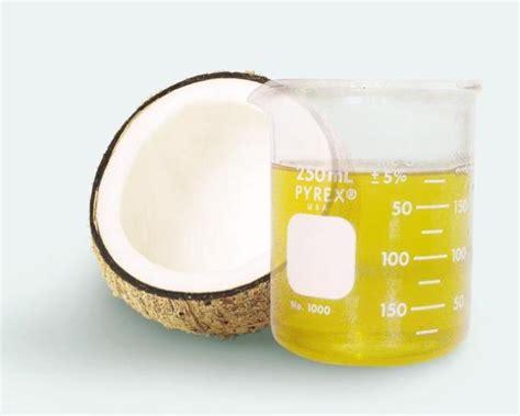Minyak Kelapa Kopra agroindustri pengolahan minyak kelapa 2 berita unik terkini