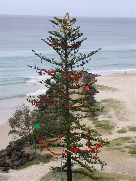 25 best ideas about christmas in australia on pinterest