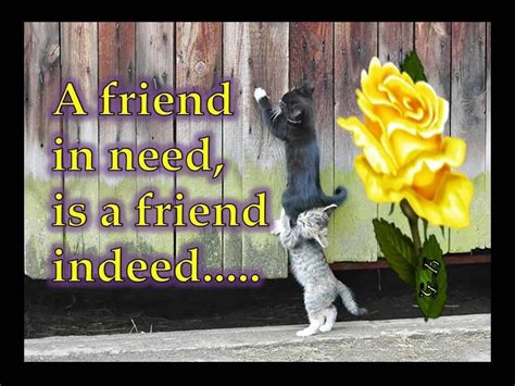 Friend In Need Is A Friend Indeed Essay by A Friend In Need Is A Friend Indeed Essay On Friends Indeed