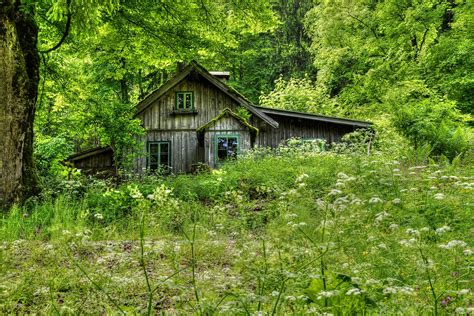 houses in the woods old house in the woods by austriaangloalliance on deviantart
