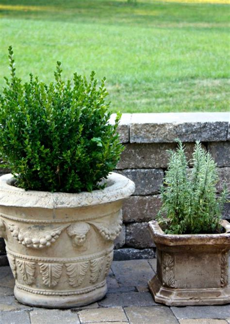Concrete Patio Planters by Late Summer Patio Creating This