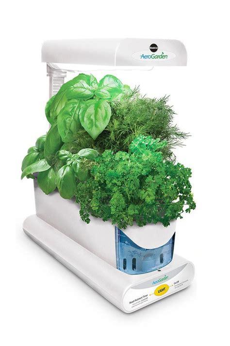 indoor herb gardens  bring  kitchen  life