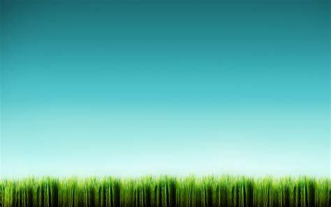 line wallpaper 1920x1200 grass line desktop pc and mac wallpaper