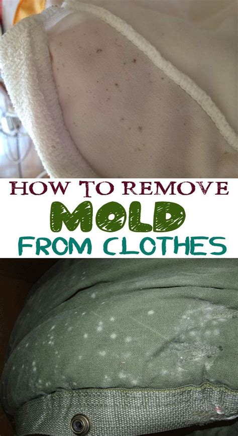 best way to remove mold from bathroom 25 best ideas about remove mold stains on pinterest
