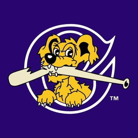 river dogs charleston riverdogs logo