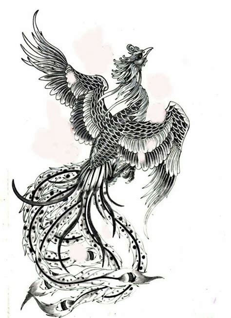 phoenix tattoo designs japanese japanese phoenix tattoo phoenix tattoo design and phoenix
