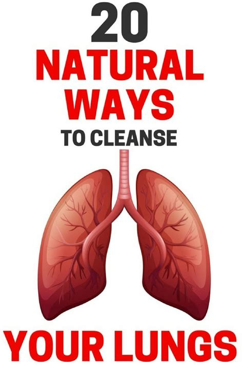 Is There A Way To Detox Lungs by Don T Take Breathing For Granted 20 Ways To