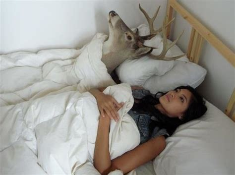 does bed head test on animals deer head in bed 171 shefinds