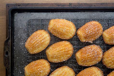 gluten free french madeleine cookies recipe