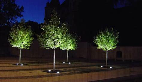 beleuchtung pflanzen modernes lichtmanagement im b 252 ro geb 228 ude und pflanzen mit