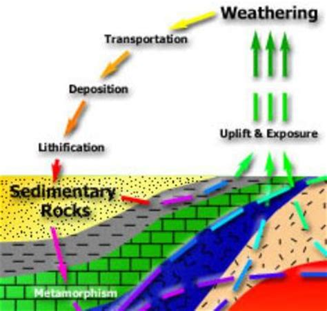 diagram of how sedimentary rocks are formed sedimentary rock cycle diagram