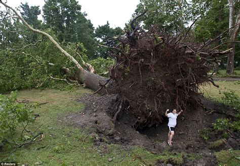tree is up superstorm strikes east coast at least 300 000 without