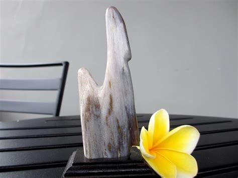 Batu Fosil Kayu Kapur Dan Kayu Uli mustika fosil kayu purba ma047 mustikaalam batu