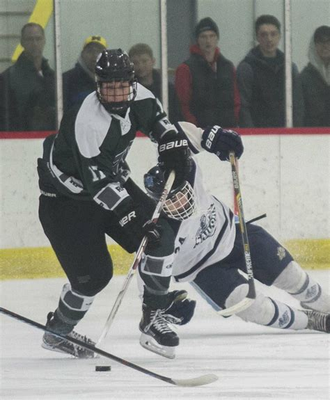 Puffer Hocker by Reeths Puffer Defenseman Headlines Area S All State Hockey